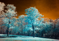 The Curious World of Infrared